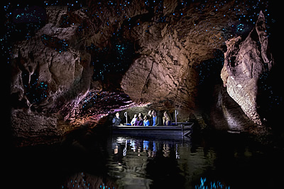 Courtesy of Real Journeys: glowworm caves