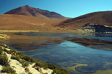Bolivia wilderness