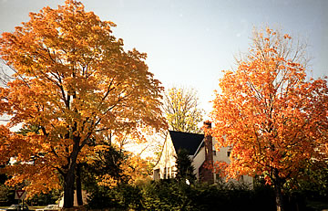 amherst fall
