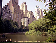 USA New York Central Park